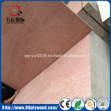 18mm Poplar Commercial Plywood / Bintangor Plywood From Manufacturer