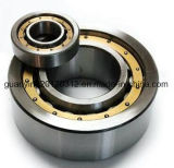 Hot Sale Cylindrical Roller Bearing Nu 313 C3