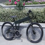26 Inch Folding Mountain Electric Bicycle with CE (CB-26MT01)