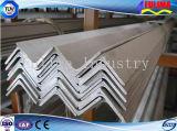 Galvanized Angel Steel on Sale (FLM-RM-019)