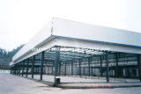 Prefabricated Steel Structure for Workshop/Warehouse (DG2-011)