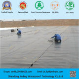 HDPE Geomembrane for Solid Waste Containment