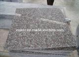 Cheap Prices G664 Granite Tiles/Slabs for Flooring
