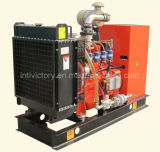 24kw Natural Gas Generator with Cummins Engine Include Ce Certifications