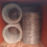 5.5mm Wire Rod SAE 1008, Hot Rolled Steel Wire Rod
