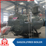 Professional manual boiler