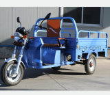 1000W Electric Tricycle with Shipment Cargo
