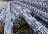12m HRB500 Deformed Steel Bar/Steel Rebar