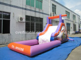 Inflatable Water Slide with Water Pool