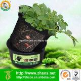 3 Gallon Garden Use Black Plastic Plant Pot for Potato