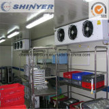 Hotel Catering Cold Storage Room for Kitchen Since 1982