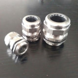 Pg9 Ss304 Stainless Steel Cable Glands