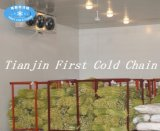 Made in China Cold Room for Fresh Vegetable, Meat Seafood