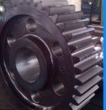 CNC Machining Carbon Steel 35# Cylindrical Gear Wheel