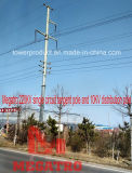 220kv Single Circuit Tangent Pole and 10kv Distribution Monopole