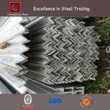 Hot Dipped Zinc Coated Angle Section Steel (CZ-A73)