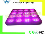 Super Power 864W LED Grow Light for Indoor Plant Growth