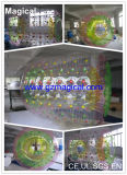 Inflatable Roller Rolling Zorb Ball (MIC-610)