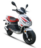 Popular Gasoline Scooter with 50cc (SP50QT-04)