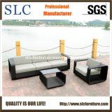 Wicker Outdoor Furniture/Antique Sofa/Outdoor Sofa (SC-B8916-B)