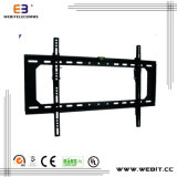 up to 63 Inch Top Quality Plasma TV Rack