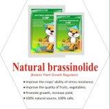 Natural Brassinolide 60% Tc Powder