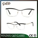 New Design Glasses Eyegalss Frames Eyewear Optical Metal Frame Tb3764