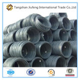 Hot Rolled Low Carbon Steel Wire Rod in Coils