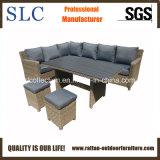 Dining Furniture Sofa (SC-A7622)
