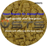 Yeast Feeds Animal Fodder Additive (animal feed)