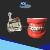 Dentales Orthodontic Self Ligating Braces Manufacture Center