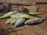 GMP Certified Refined Krill Oil, Natural Krill Oil