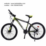 Hot Sale Cheap Adult Mountain Cycle