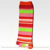 Lady′s Five Toe Cotton Sock