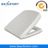 European Bathroom Sanitary Ware Soft Closeing Seat Toilet with Bidet