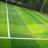 (ST) Synthetic Outdoor Soccer Field Grass