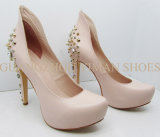 2013 Platform High Heel Woman Fashion Shoe (YMD002096-2)