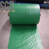 Professional Colorful PP Woven Fabric