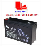 6V10 VRLA Battery Used for Alarm System Emergency Systems Lead Acid Battery Without Maintenance