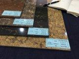 Pulati Stone Polished Porcelain Floor Tile/ Ceramic Tile (VPB6013D)
