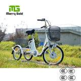 Wholesale 3 Wheel Pedal Assist 36V 250W Electric Trike