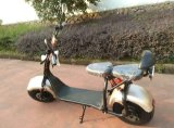 800W Electric Touring Motorcycle with F/R Shocks, 2 Seats, Flashing Lights
