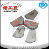 M1445r M1445L Cemented Tungsten Carbide Mining Tips