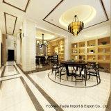 600X600mm Building Material Soluble Salt Polished Porcelain Floor Tile (TJ6003)