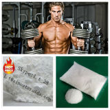 Anabolic Steroid Powder Fluoxymesteron for Man (CAS 76-43-7)