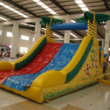 Inflatable Slide with Tunnel (SL-091)