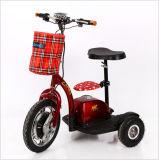 Wholesale Mini Leisure Folding Electro-Tricycle