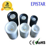 Ce RoHS Approved 10W Surface Mounted Ceiling Lighting LED Downlight