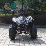 Fashion Newest 4 Wheeler Kids 50cc Quad ATV (A05)