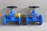 Pn25 End Ductile Iron Ggg50 Nrs Gate Valve (Z45X-16Q)